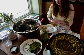 Rolling Wild Stuffed Grape Leaves